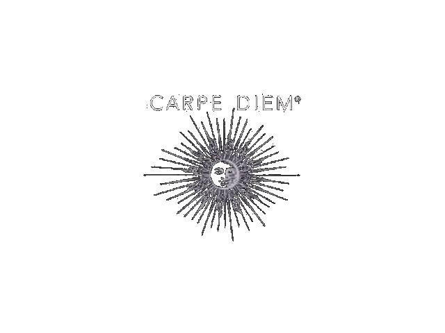 Carpe Diem Wine